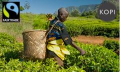 Kopi Fairtrade Fortnight 2012